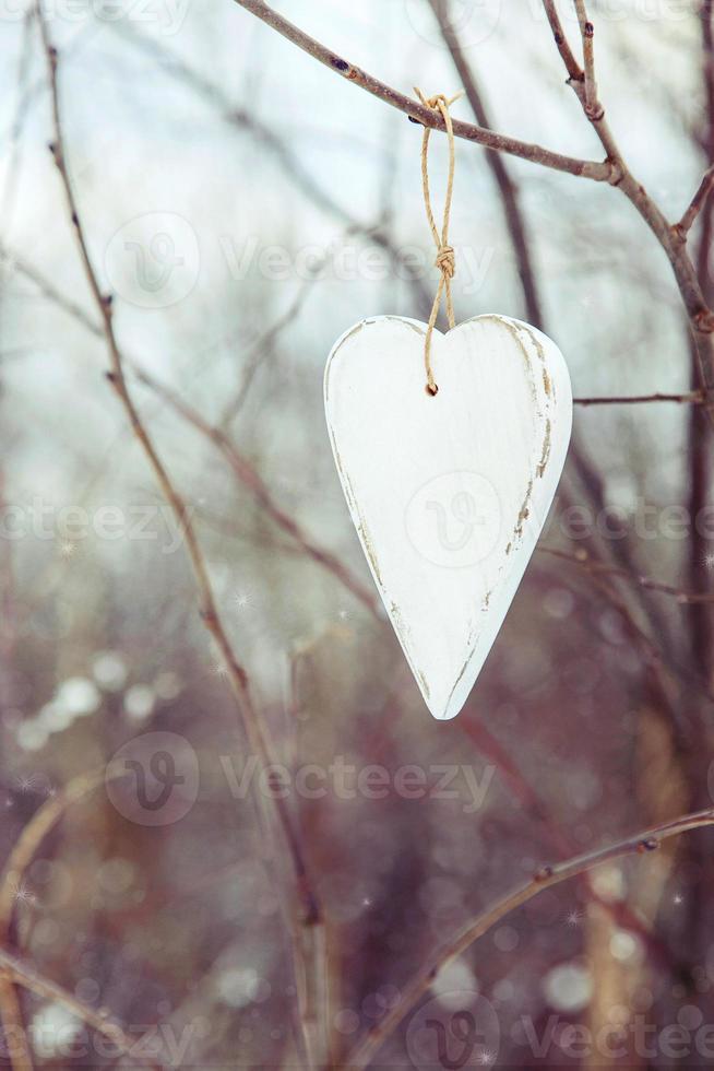 cuore bianco vintage appeso all'albero foto