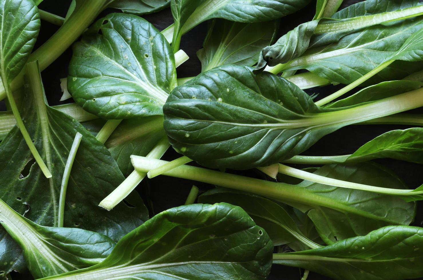 fotografia di baby pak-choi foglie di insalata per sfondo alimentare foto