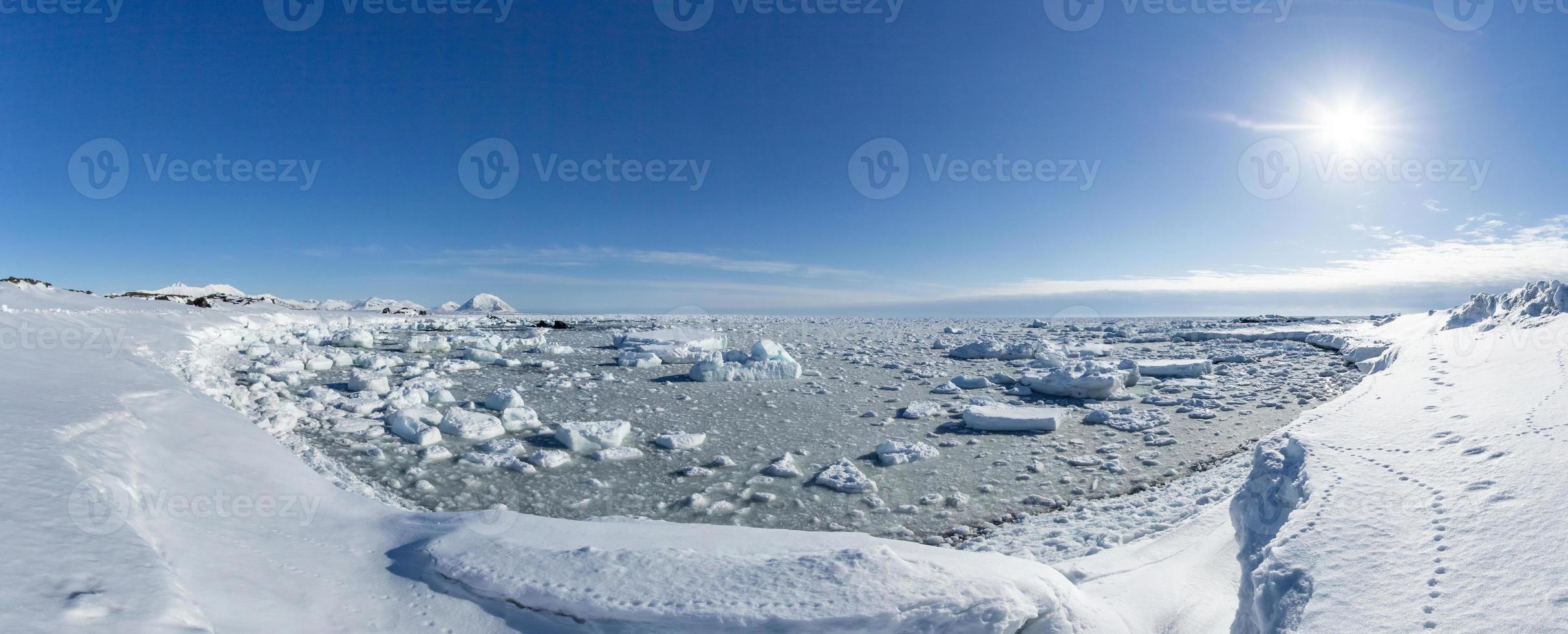 primavera artica nello spitsbergen meridionale. foto