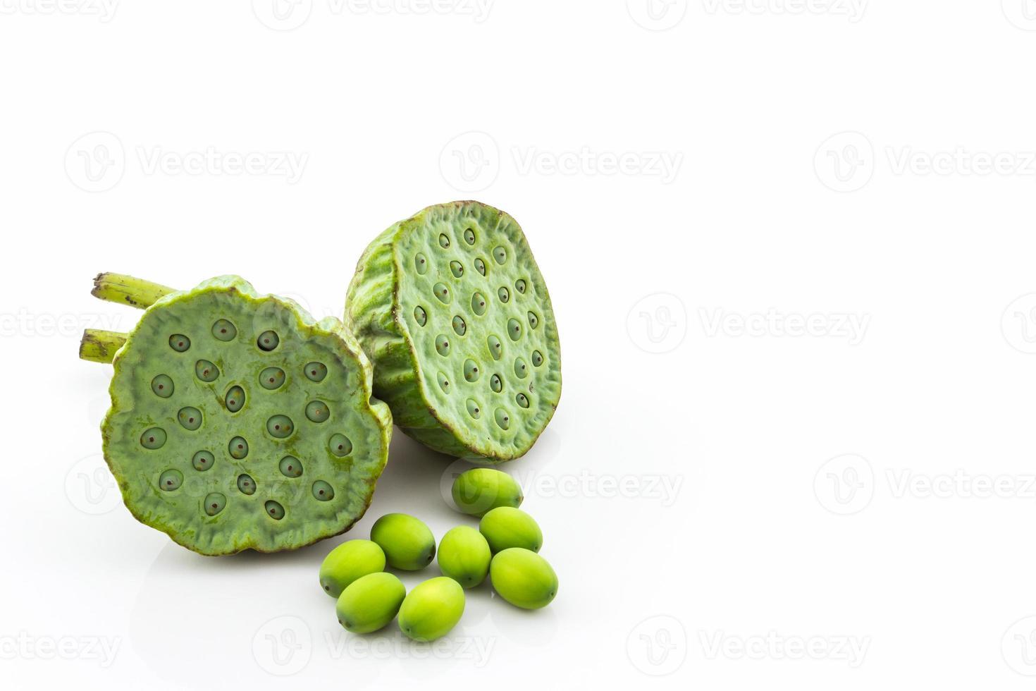 calice, semi di loto verde. foto