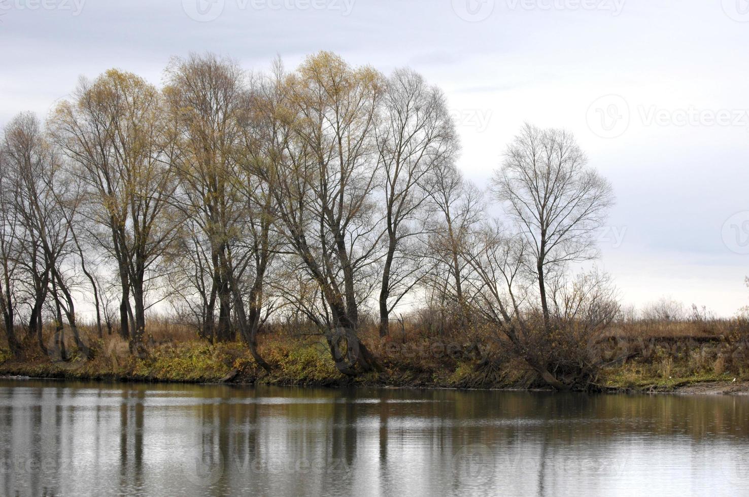 autunno, foto