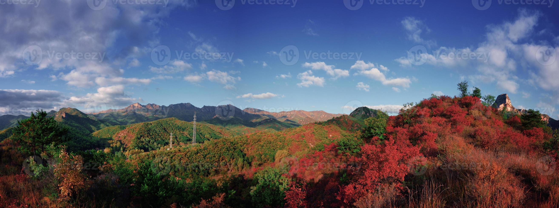 autunno colorato foto