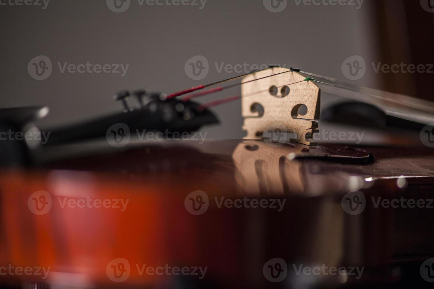 macro di violino foto