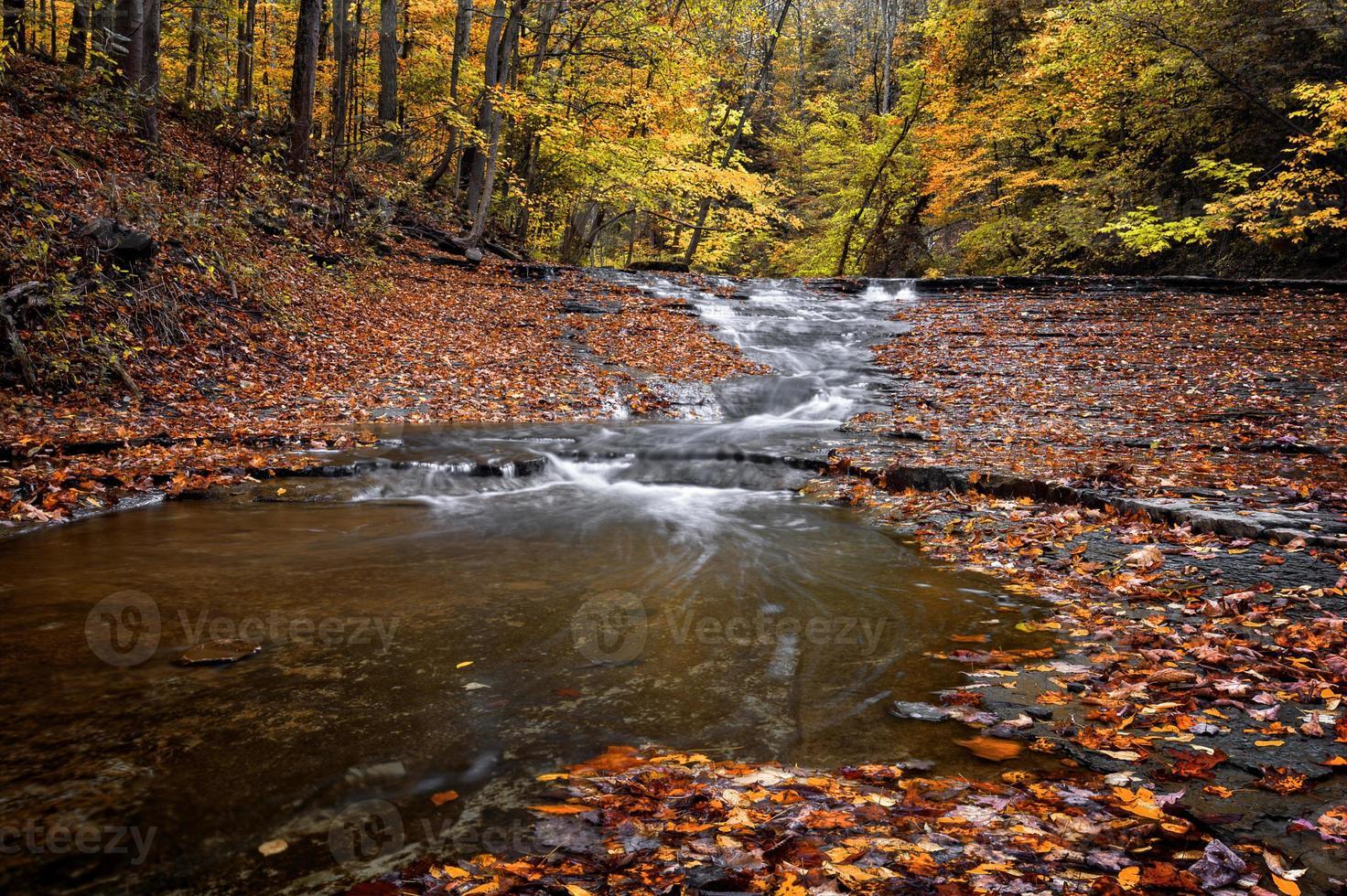 cascata d'autunno foto