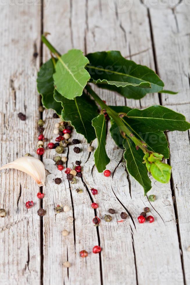 ramoscello di alloro fresco, aglio e pepe in grani foto