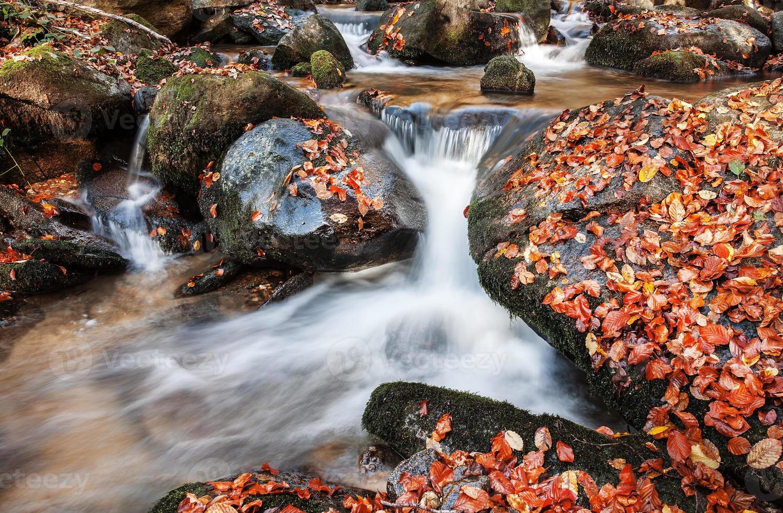 il torrente in autunno foto