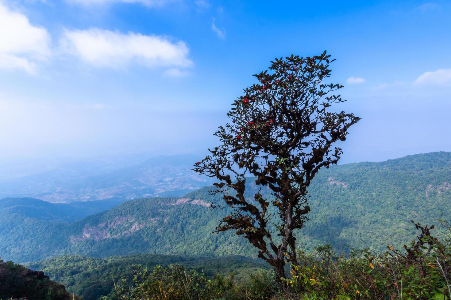 paesaggio a kew mae pan, thailandia foto