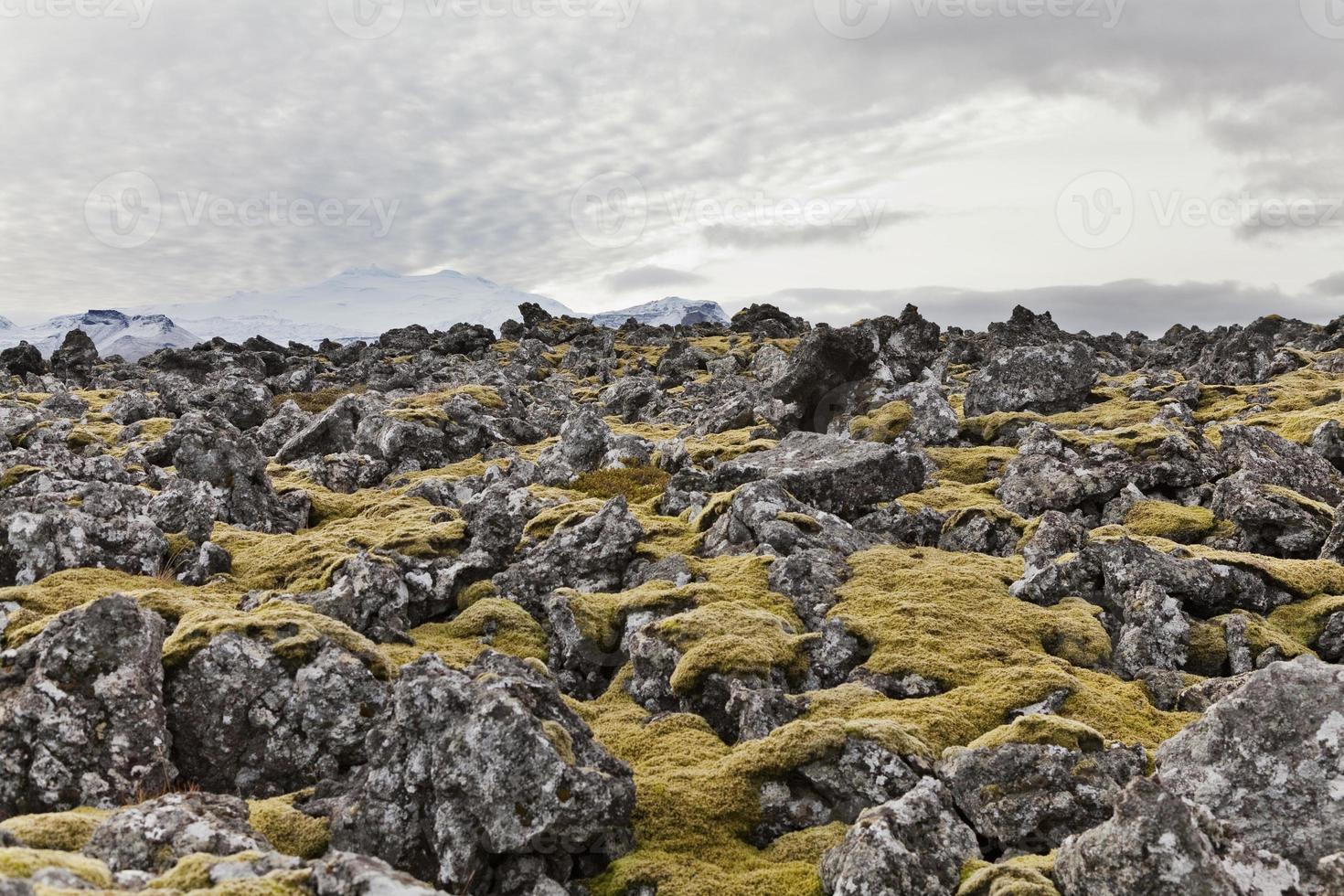 campo vulcanico con il vulcano Snaefellsjokul sul retro. foto