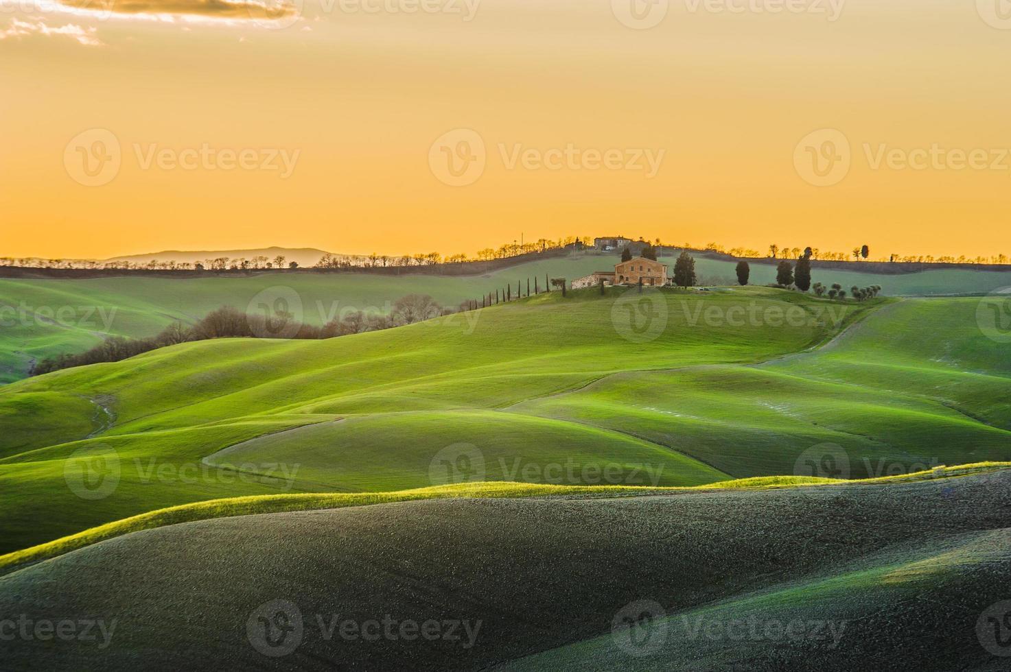 campi primaverili toscani bagnati dalla calda luce del sole foto