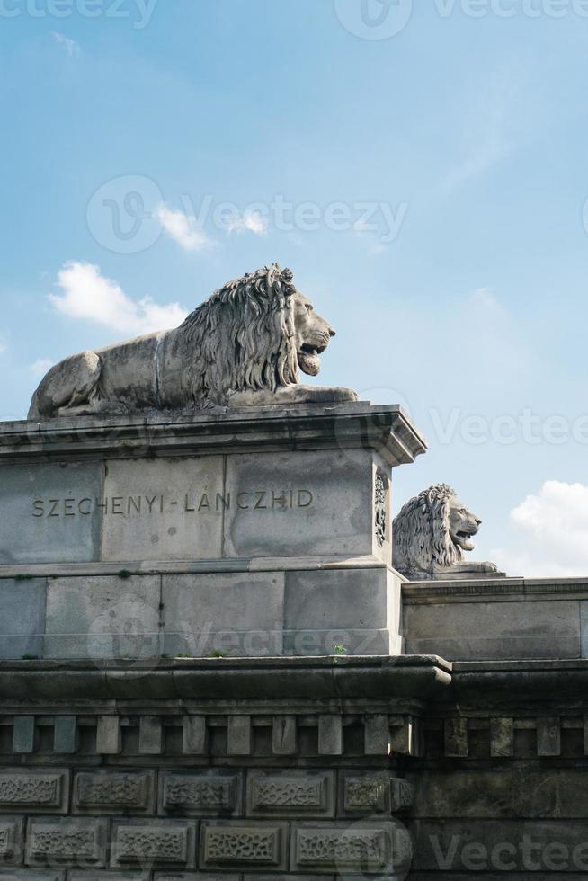 statue di leoni sul ponte delle catene a budapest foto