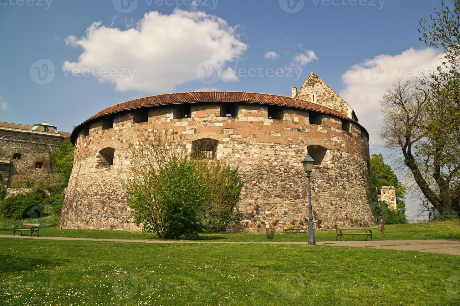 castello di buda. foto