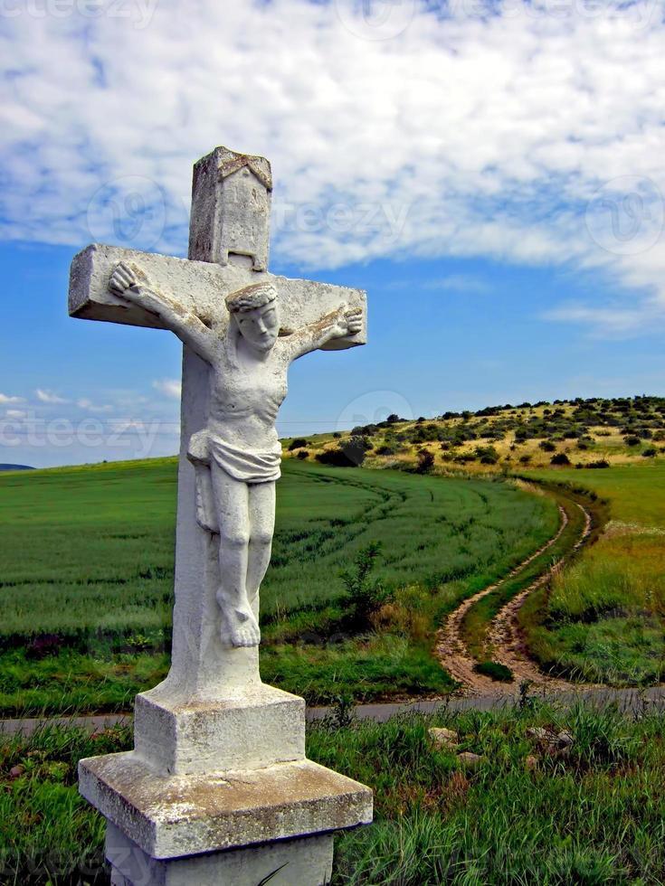 campagna ungherese foto