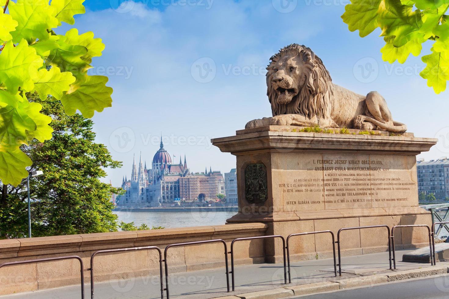 monumento del leone sul ponte delle catene a budapest foto