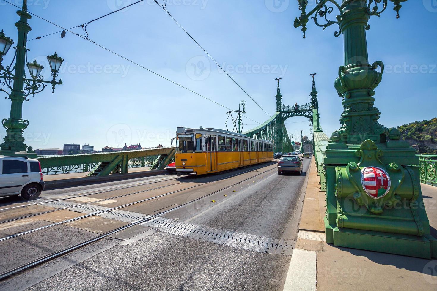 vista del ponte della libertà sul Danubio foto