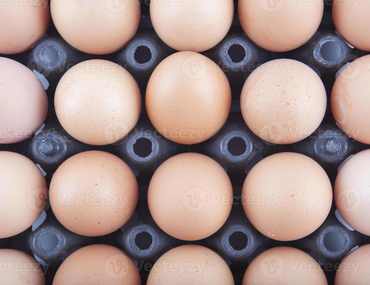 pannello delle uova foto