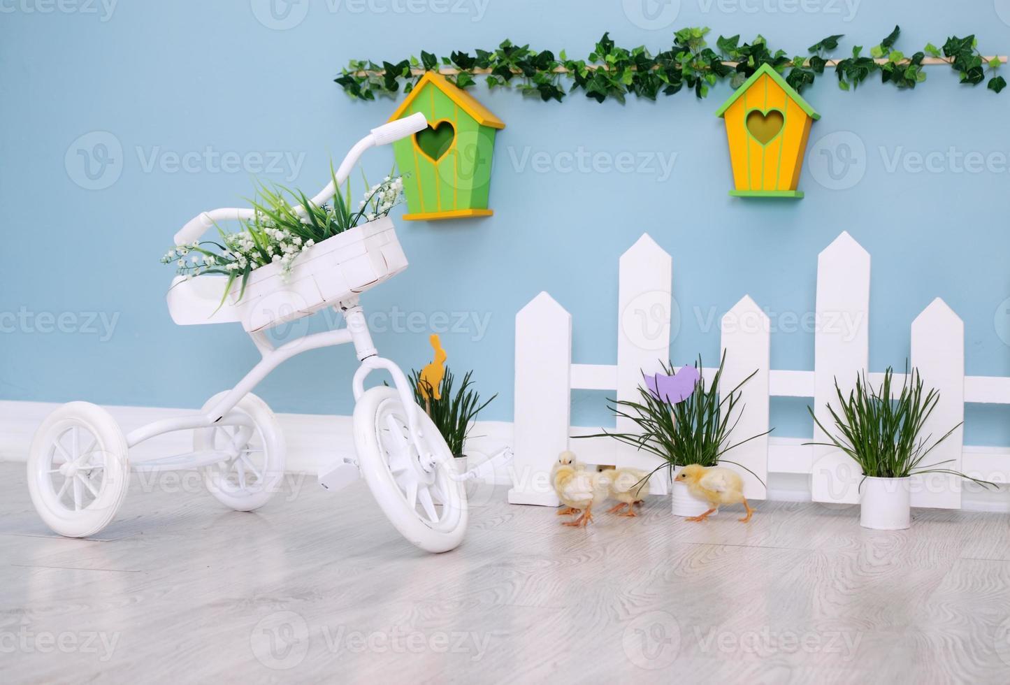 area bimbi con bicicletta foto
