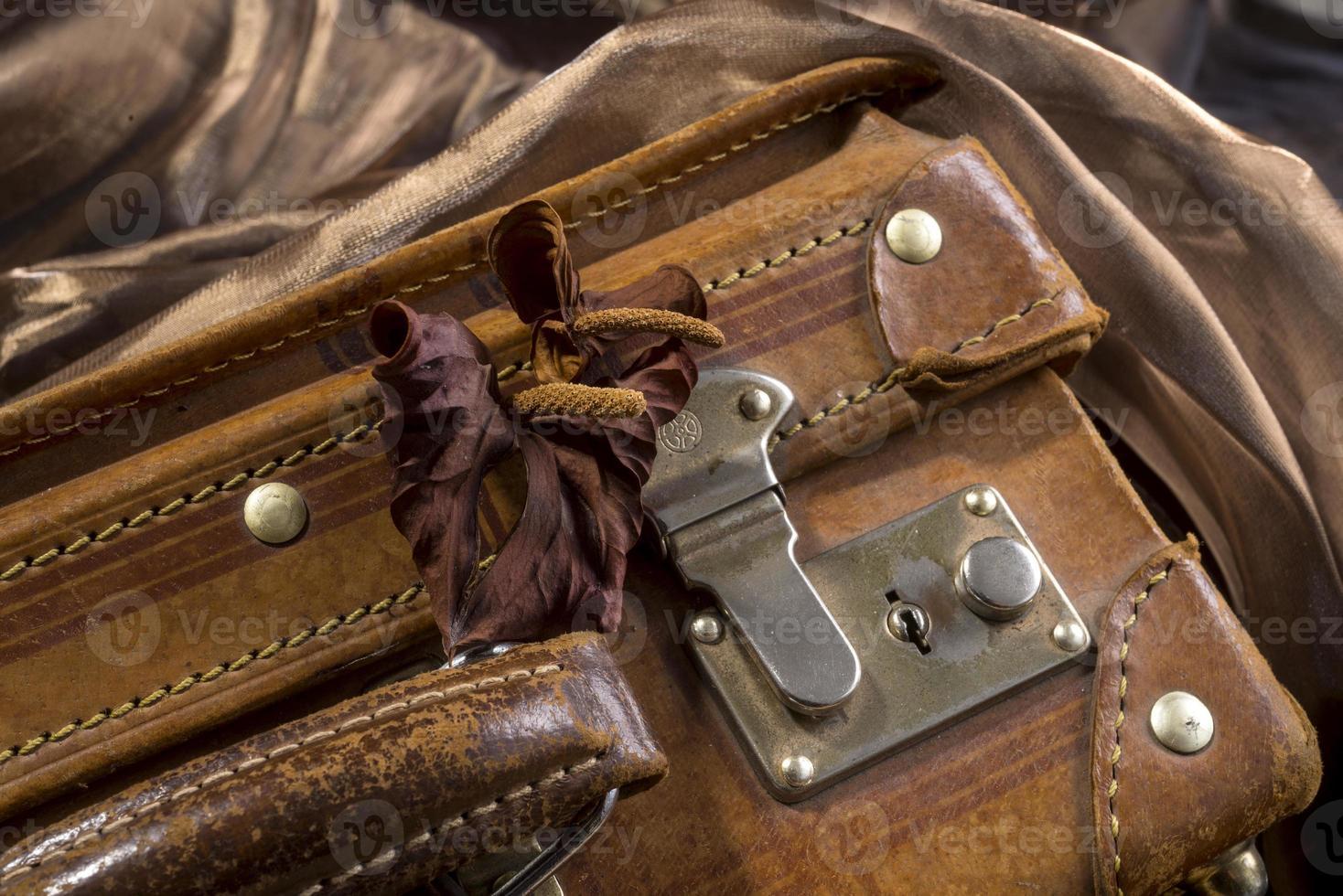 valigia antica con fiori secchi foto