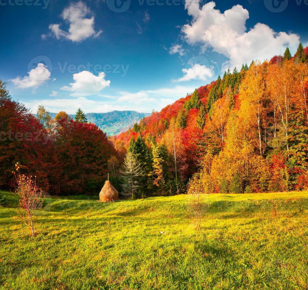 colorato paesaggio autunnale nelle montagne dei carpazi foto