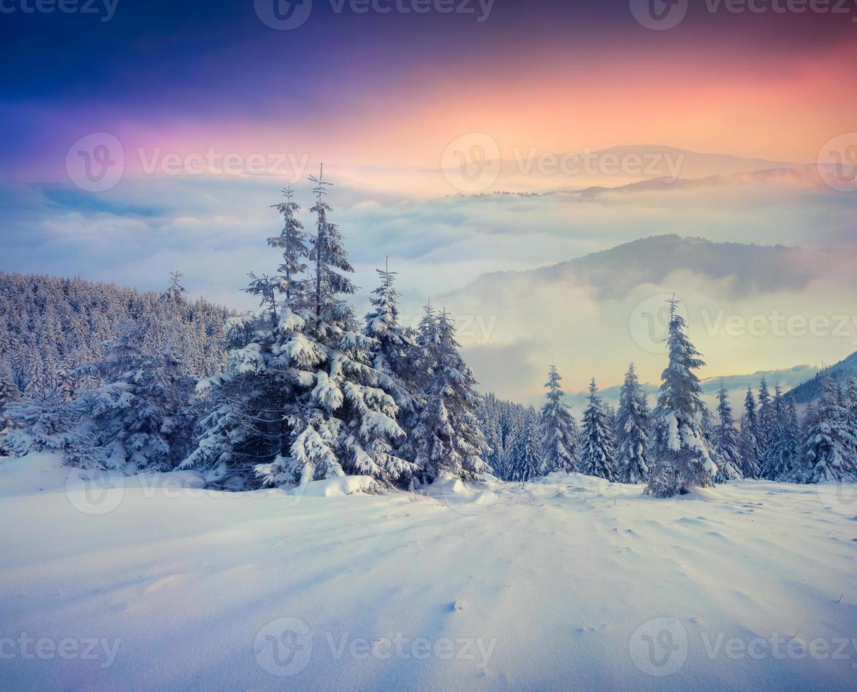 nebbiosa alba invernale in montagna. foto