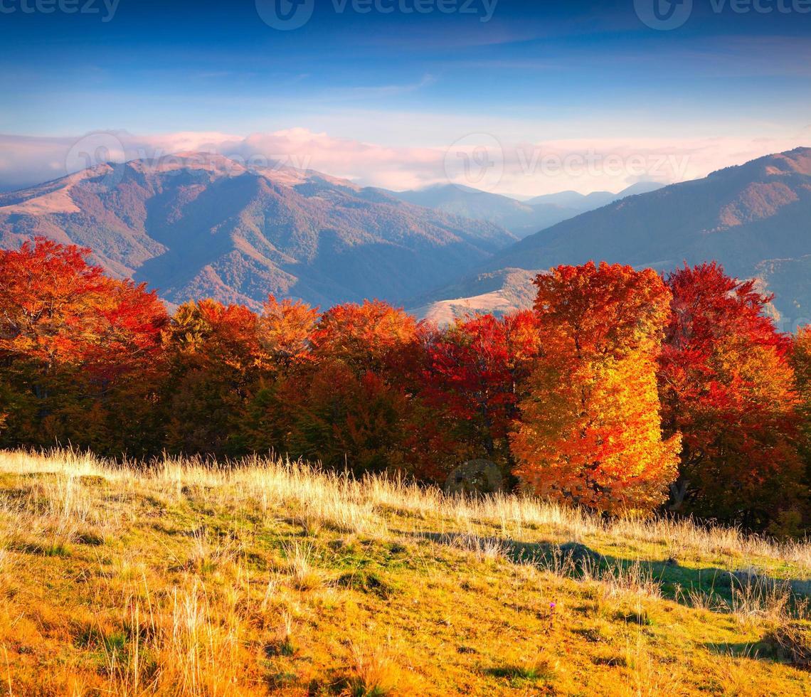 colorato paesaggio autunnale in montagna foto