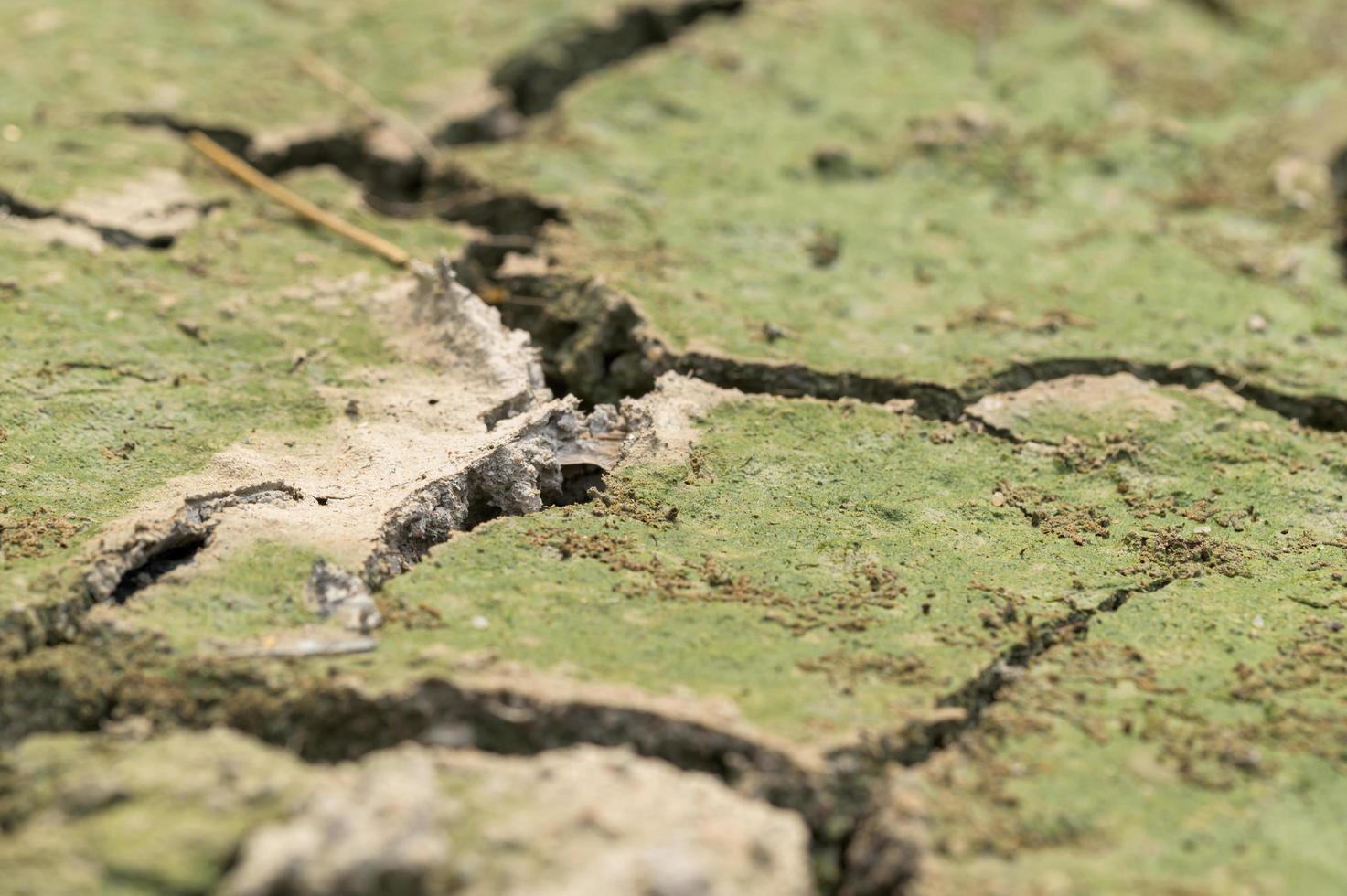 primo piano del terreno asciutto foto