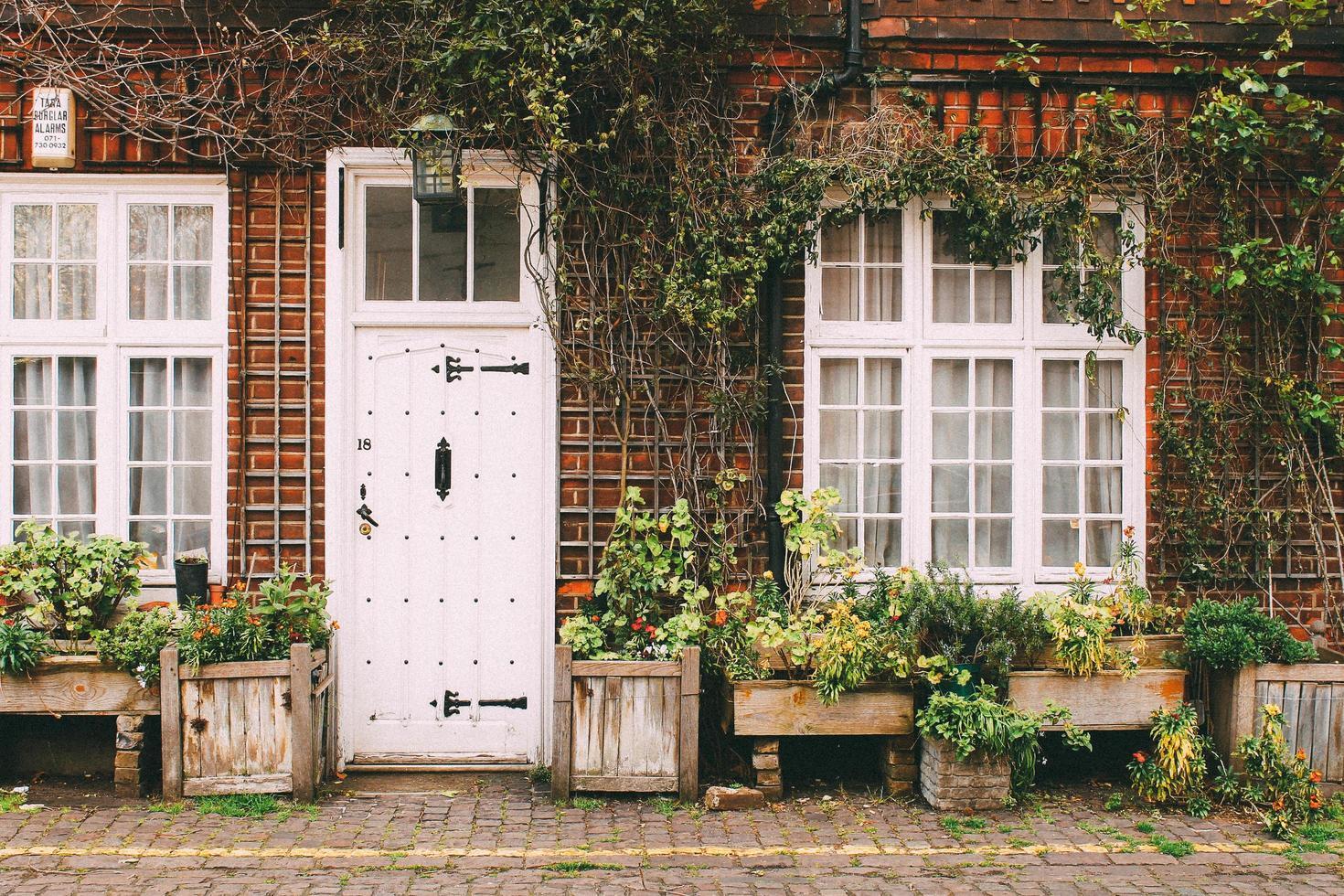 londra, inghilterra, 2020 - piante assortite davanti a una casa foto