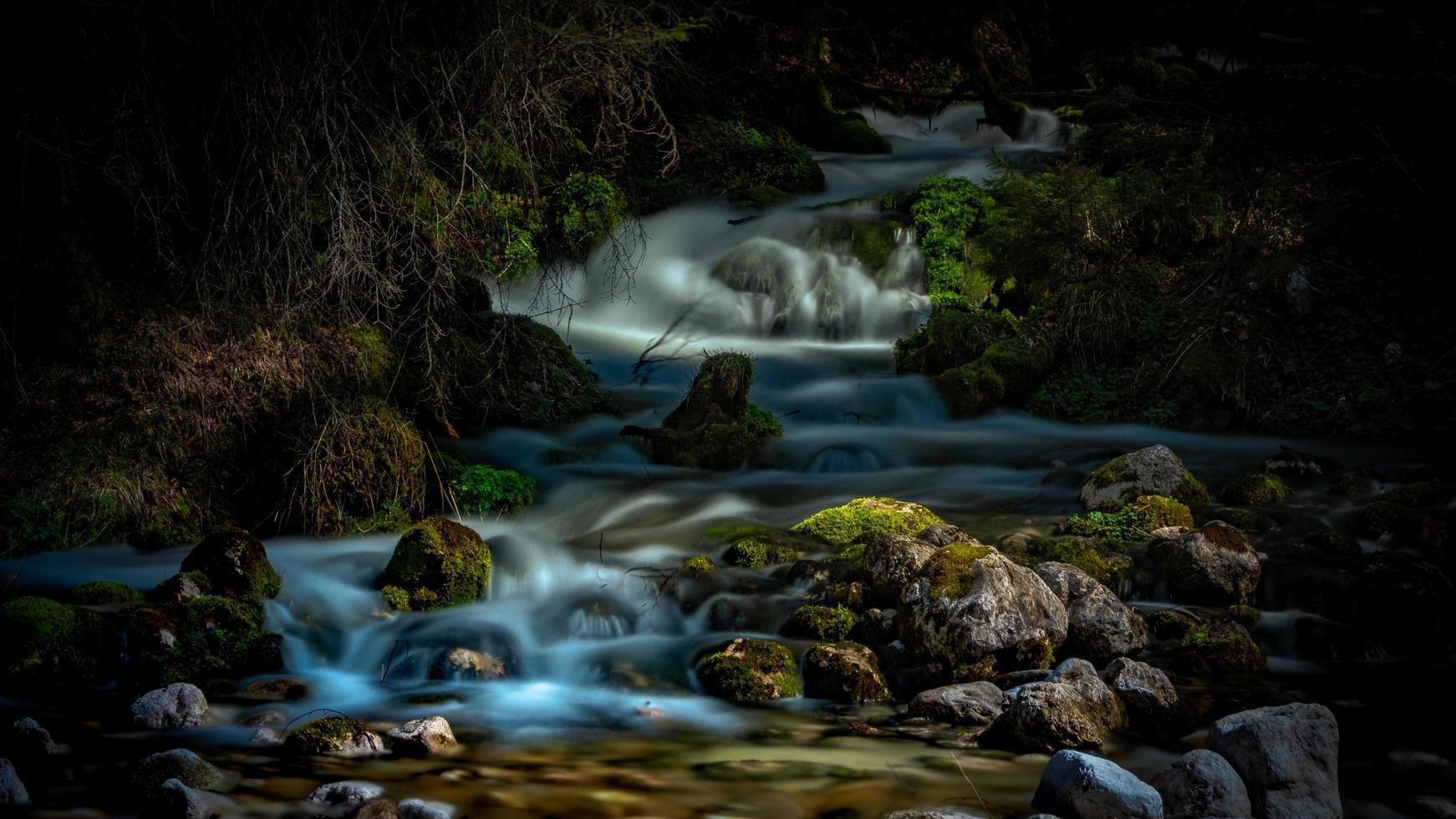 cascate in una foresta oscura foto