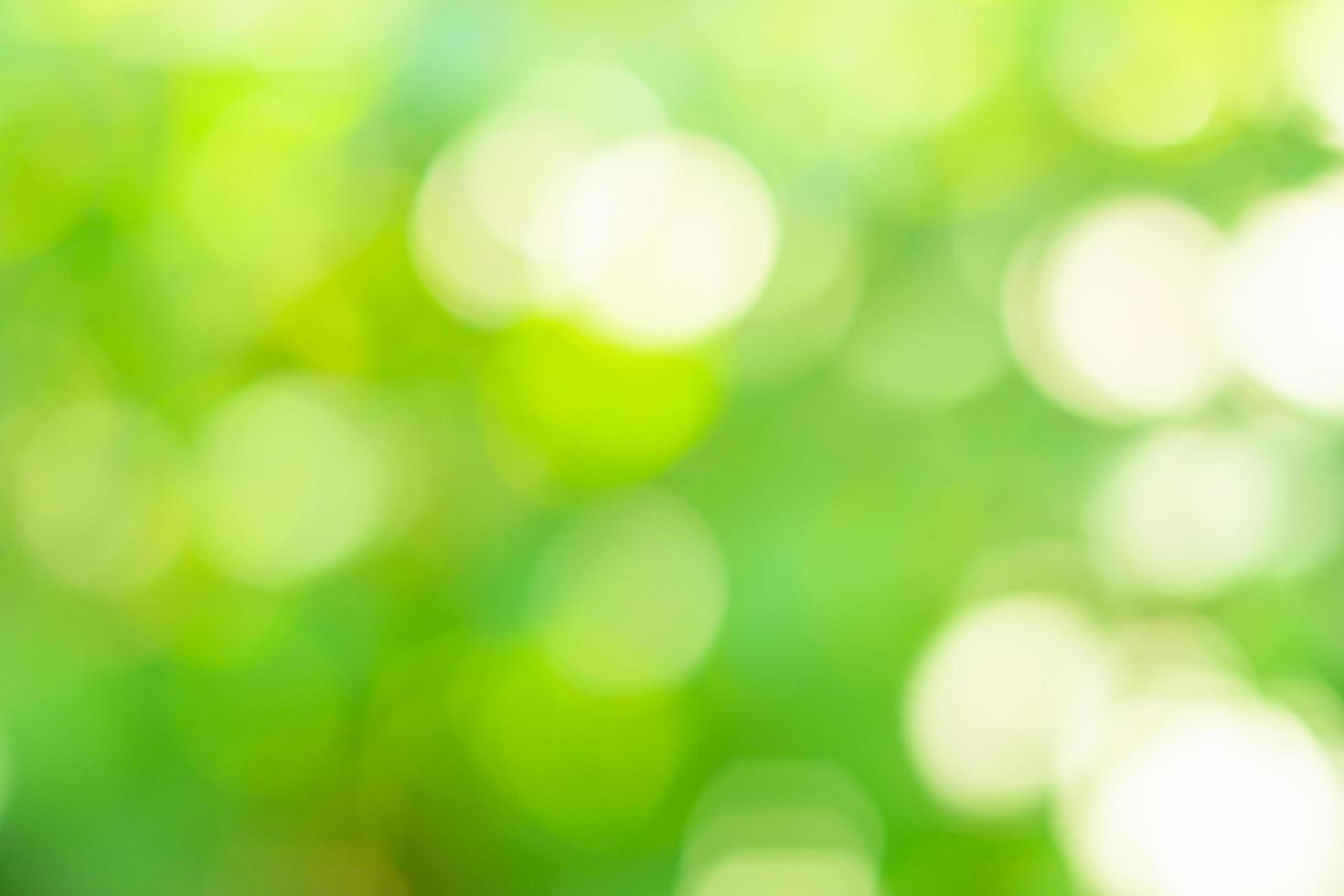 sfocato naturale sfondo bokeh di fondo foto