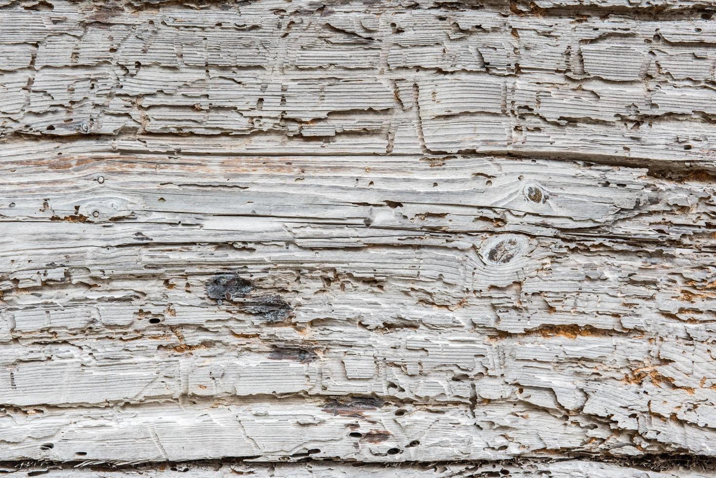 struttura in legno bianco rustico foto