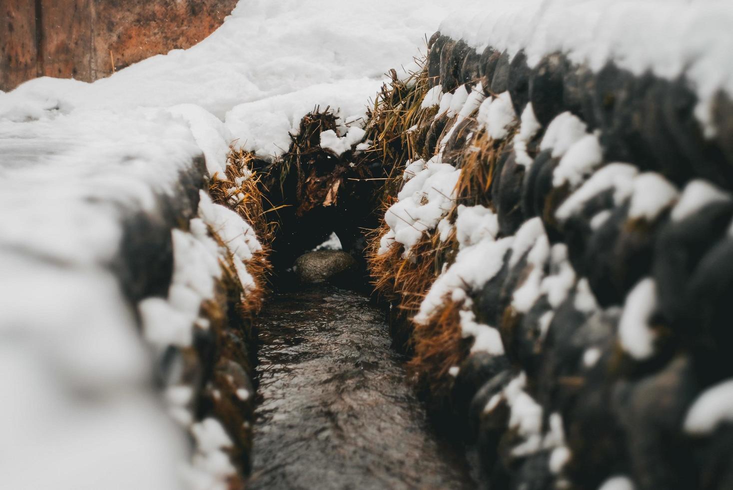 piccolo ruscello in inverno foto