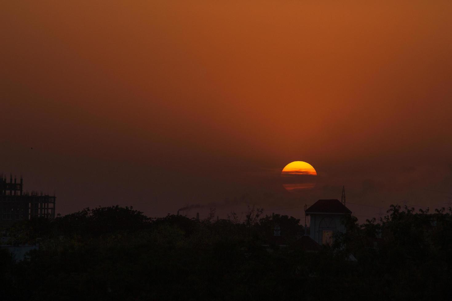 silhouette di alberi al tramonto foto