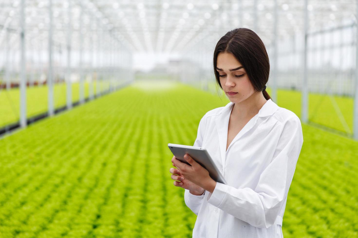 ricercatore femminile utilizzando un tablet foto