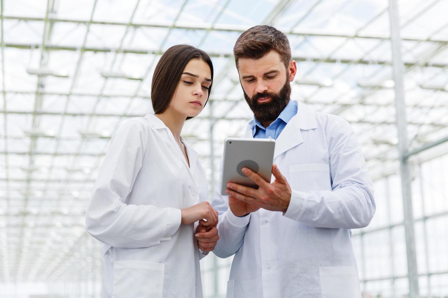 uomo e donna lavorano con tablet in piedi nella serra foto