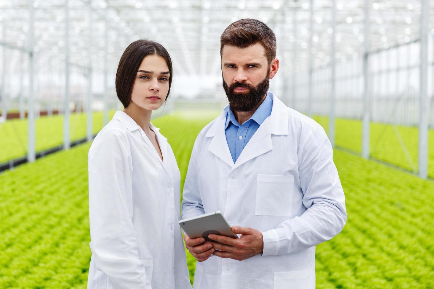 due ricercatori in una serra foto