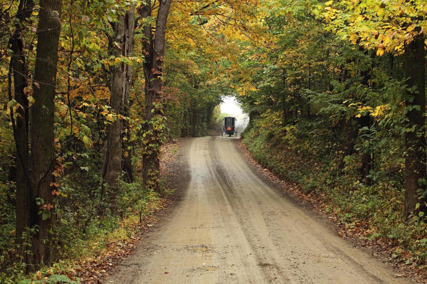 cavallo e carrozza in lontananza su una strada sterrata foto