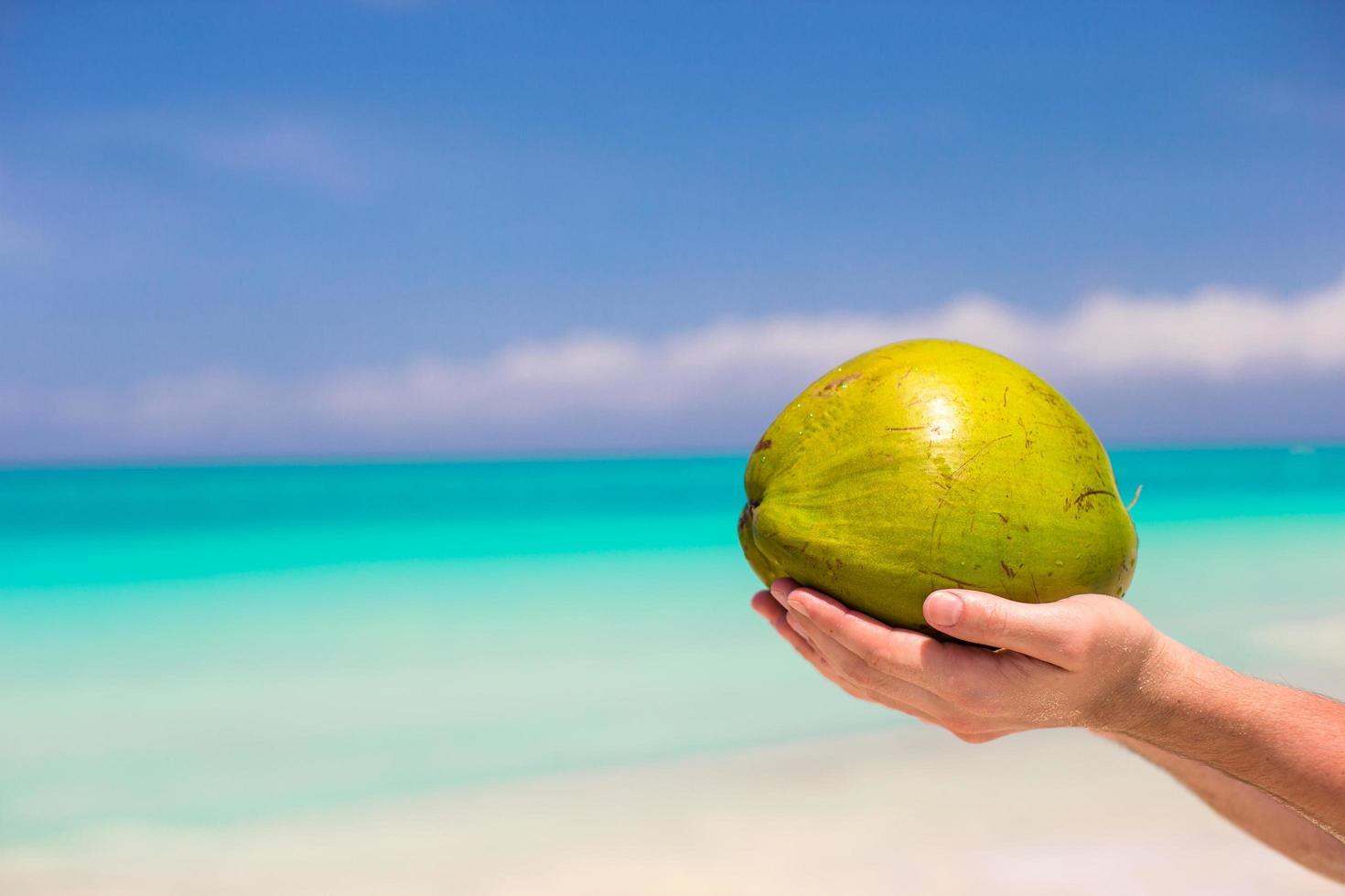 persona in possesso di una noce di cocco su una spiaggia foto