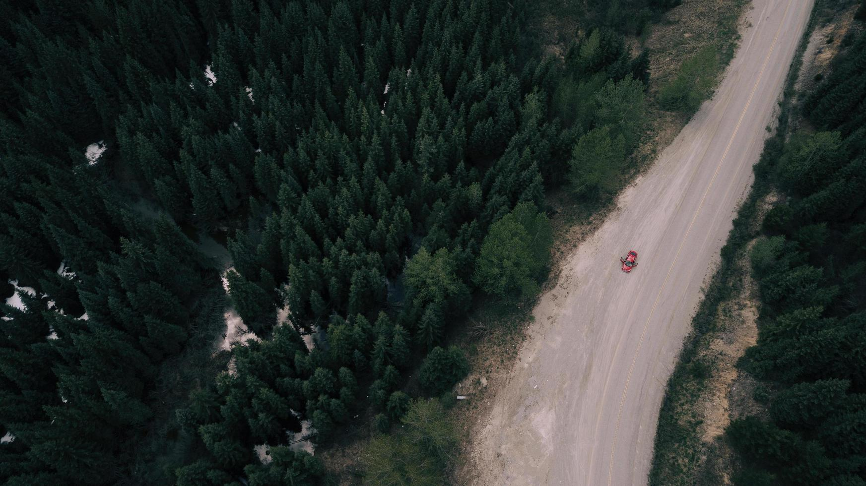 vista aerea di una macchina rossa su una strada tra gli alberi foto