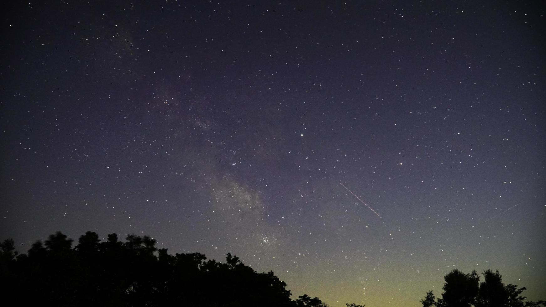 silhouette di alberi durante la notte con le stelle foto