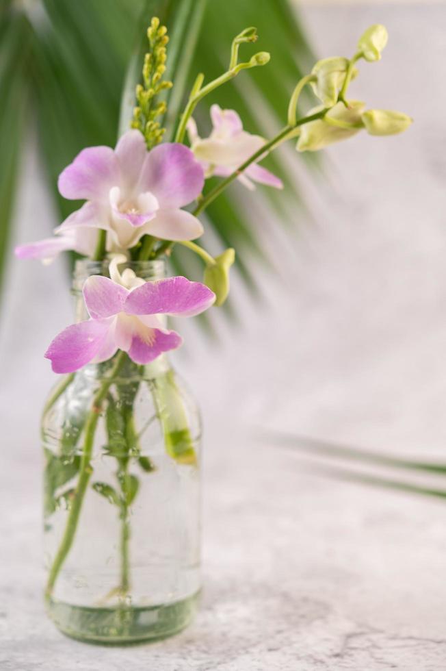orchidea viola in una bottiglia di vetro foto