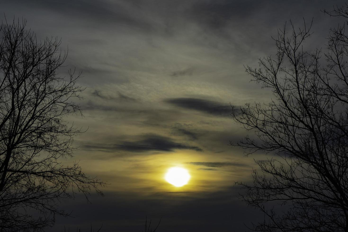 il sole nell'ovatta foto