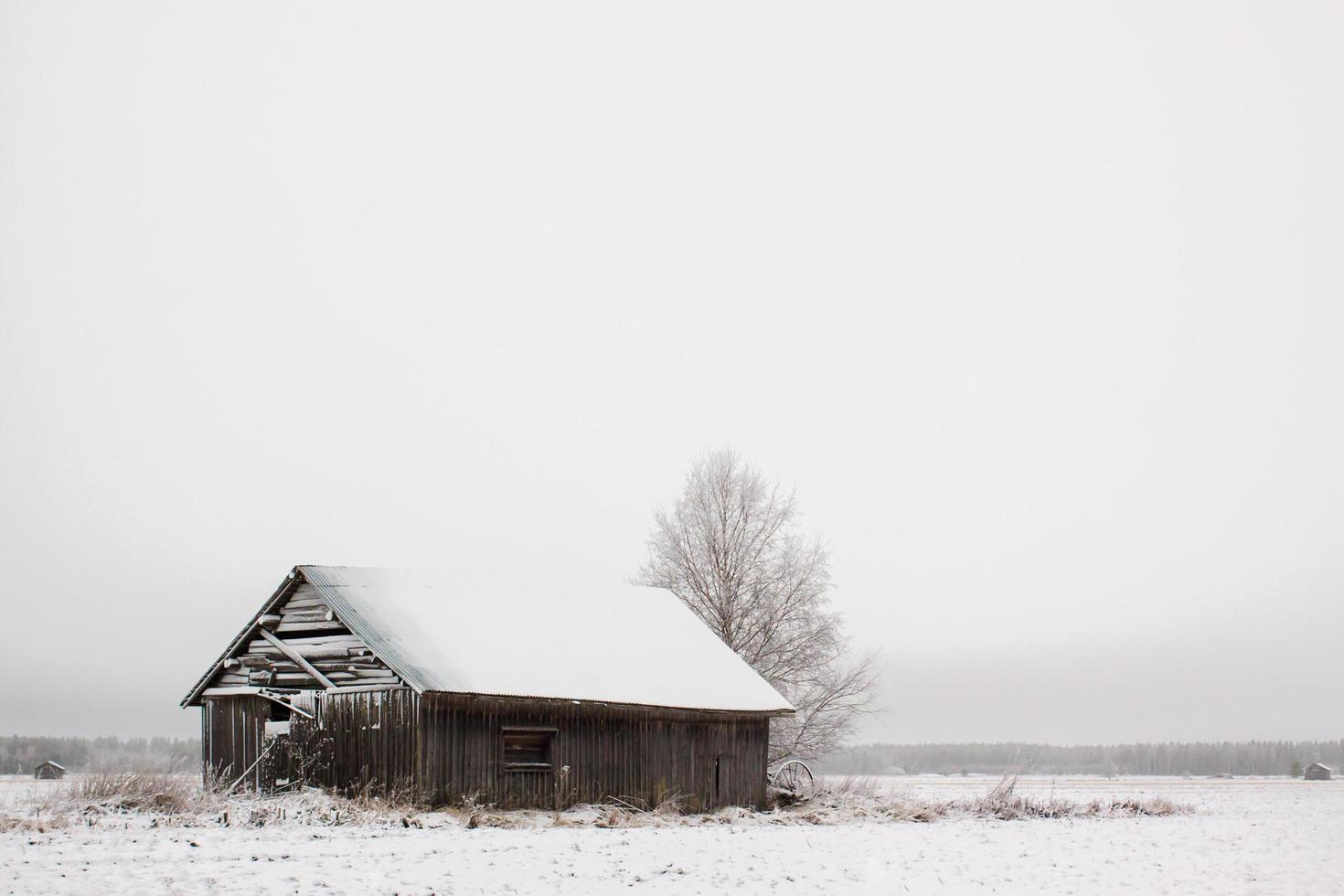 fienile in legno sul campo coperto di neve foto