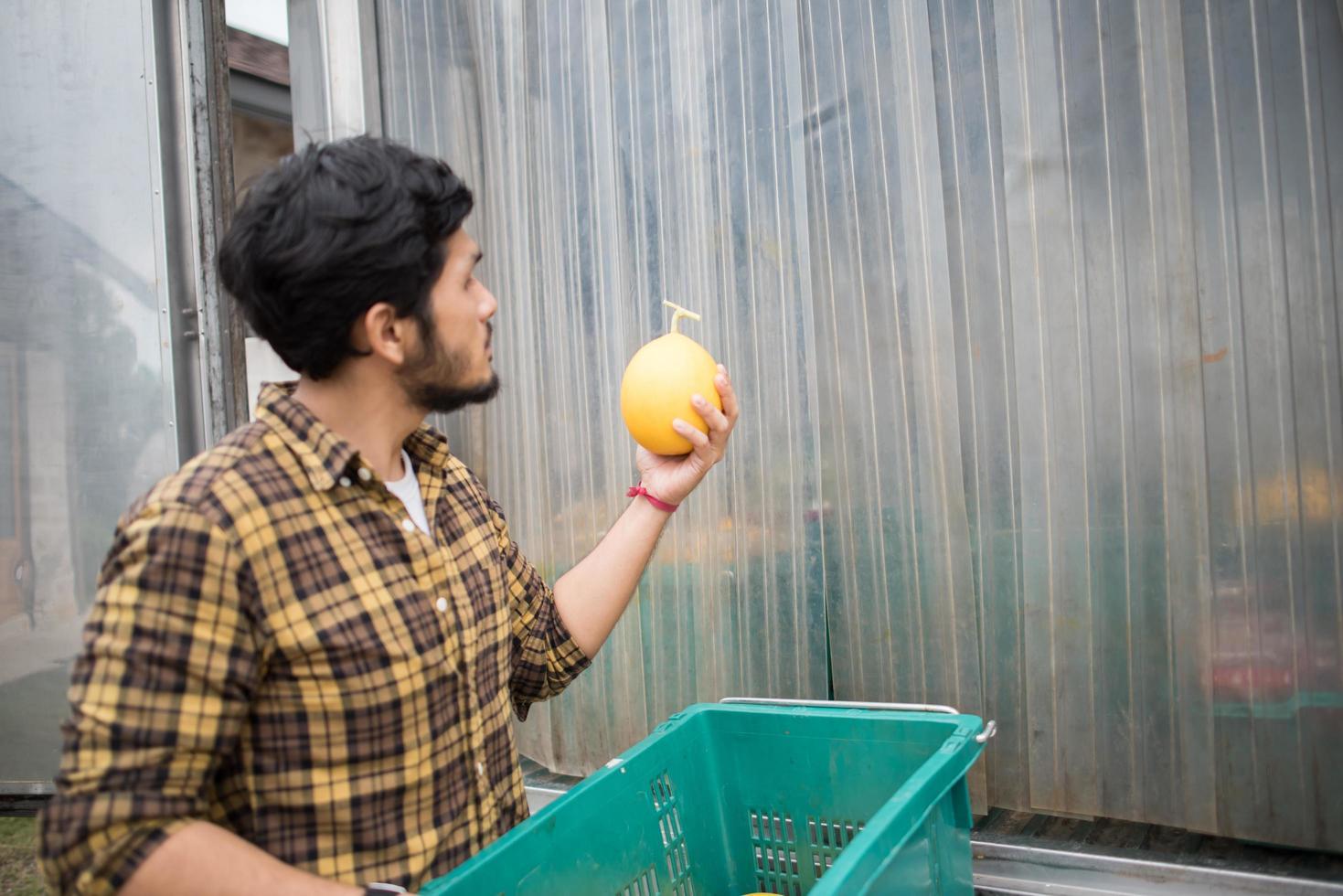 ritratto di un contadino hipster tenendo la scatola di frutta per la vendita sul mercato foto