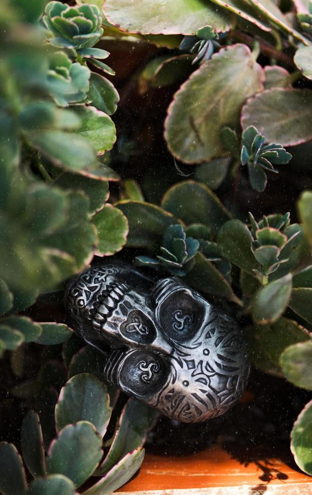 ornamento teschio bianco e nero foto