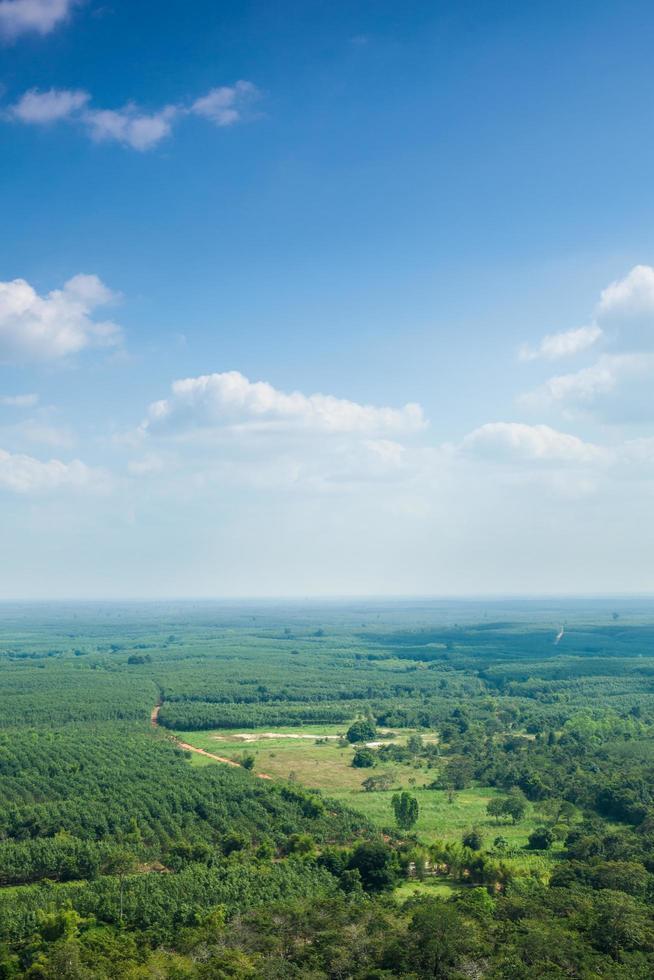 aree forestali e agricole in Tailandia foto