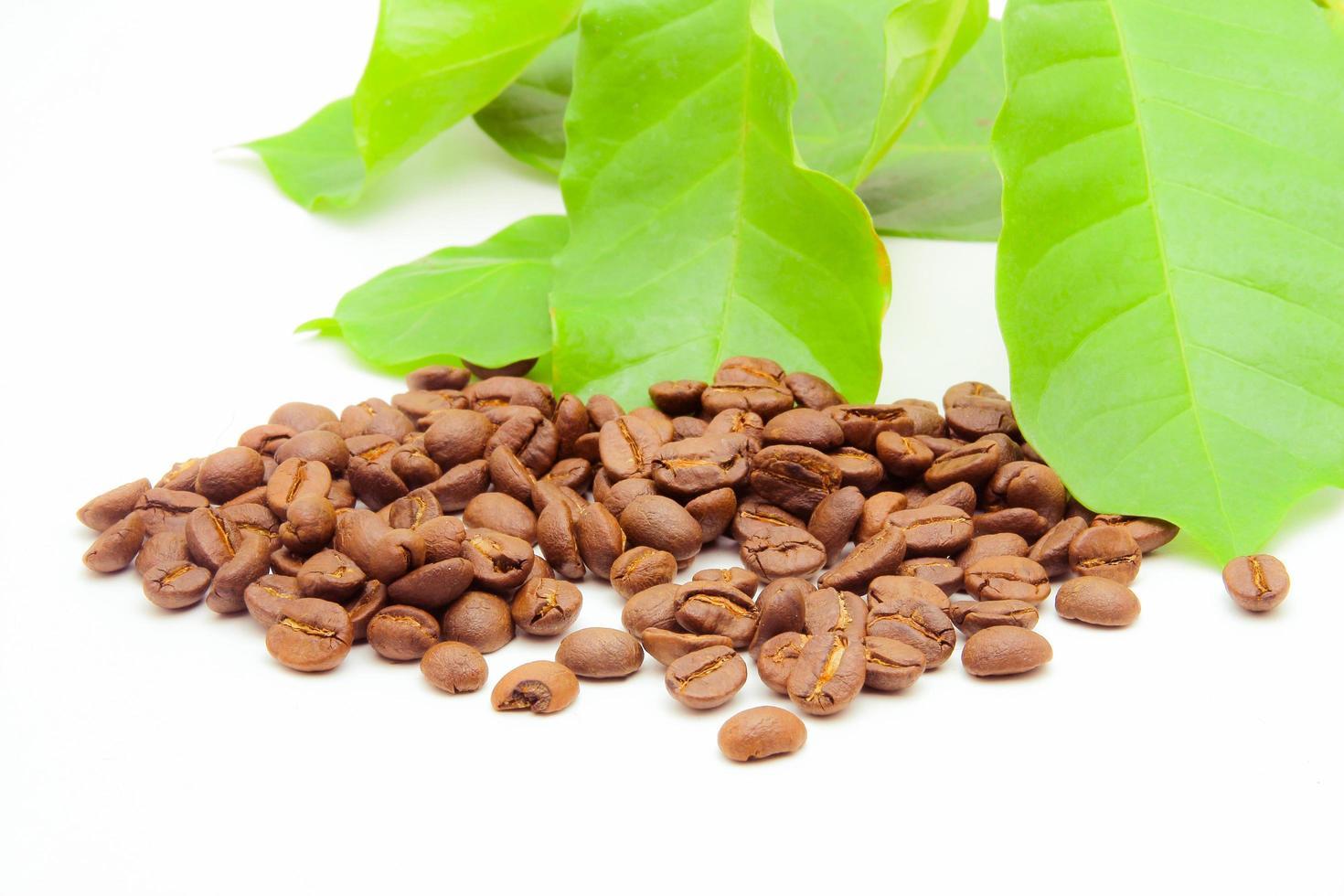 chicchi di caffè e foglie su bianco foto