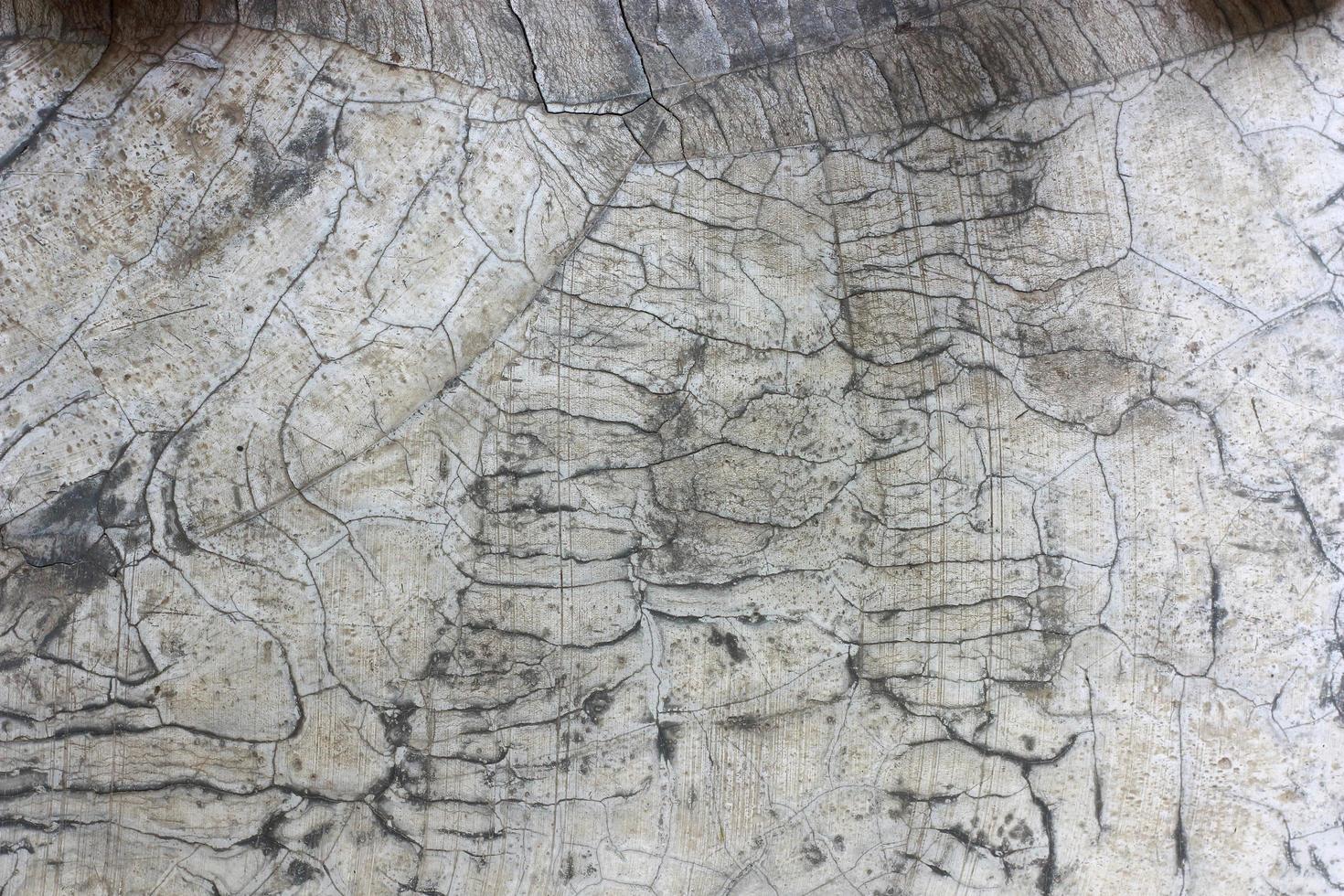 pietra grigia incrinata foto