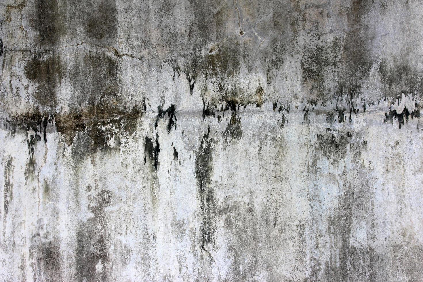 grintoso muro di cemento foto