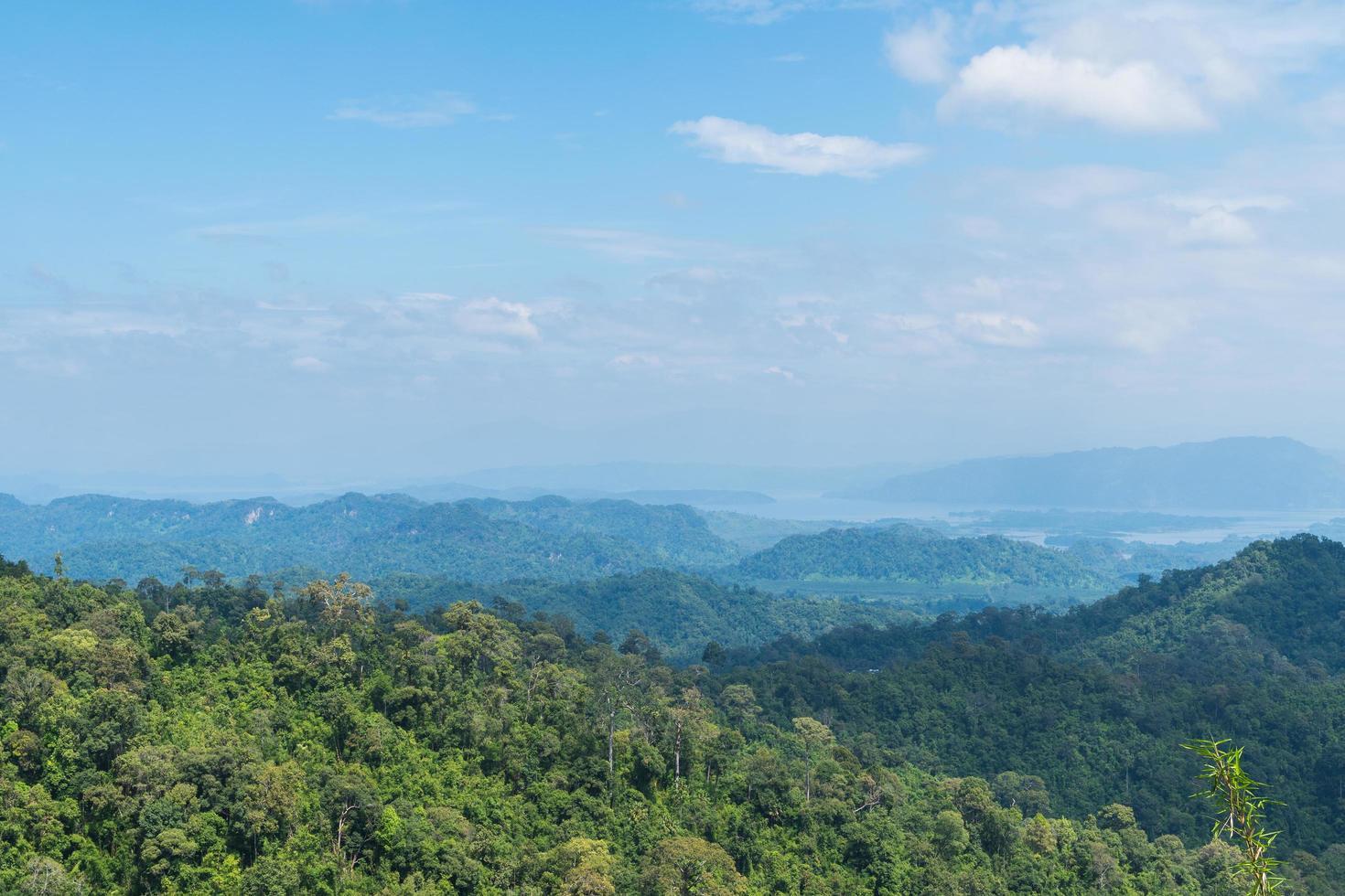 foresta sulle montagne foto