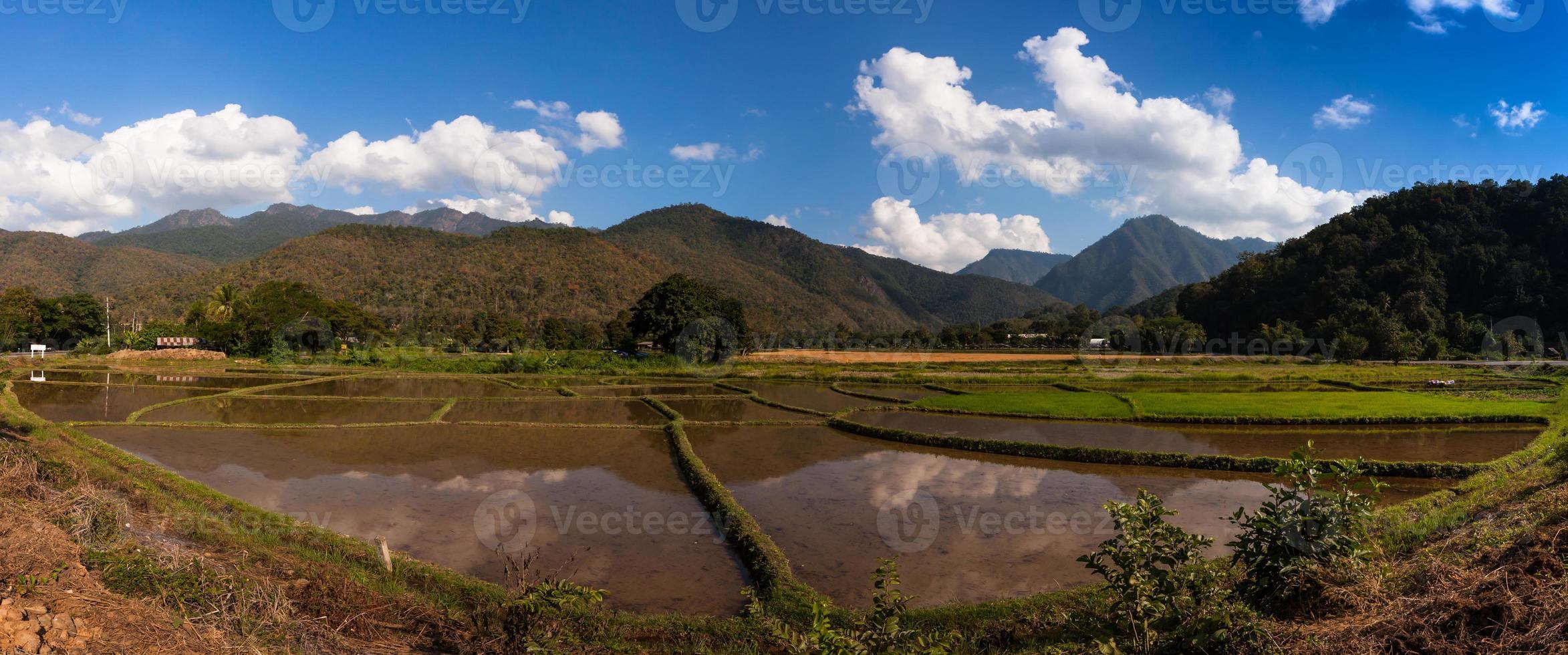 terrazza del terreno vicino alle montagne foto