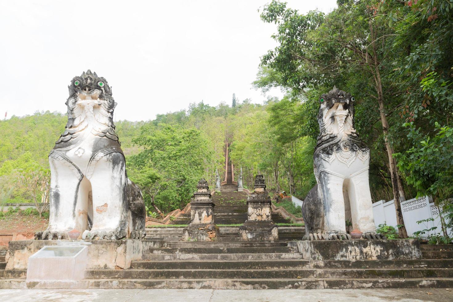 statue di leoni alle scale foto
